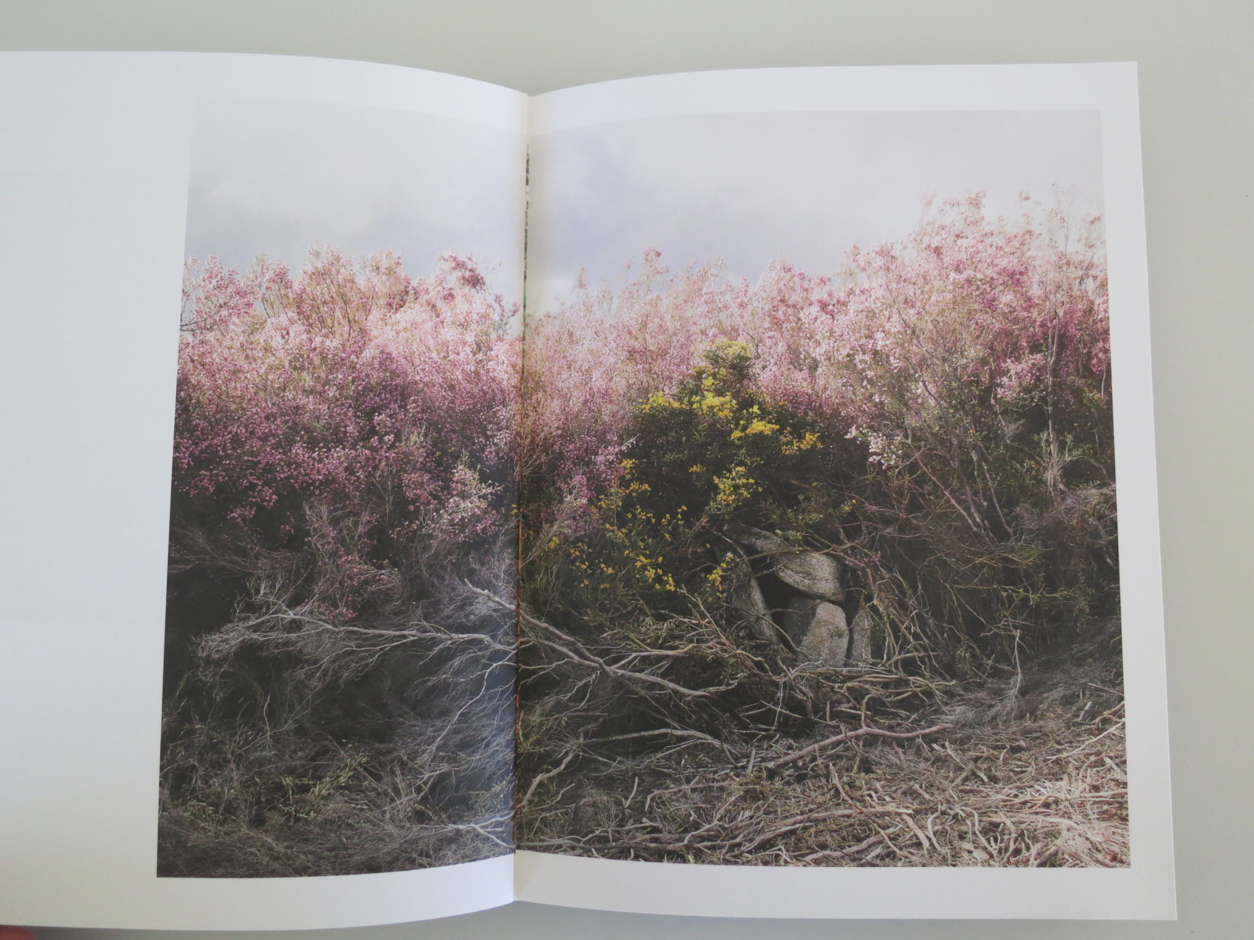This Week In Photography Books: Paul Gaffney