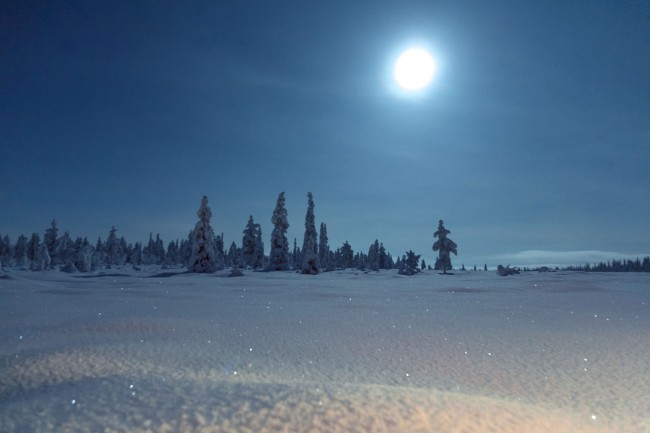 """Winter's Fairytale"" - chilly moonlit lanscape in Sweden"