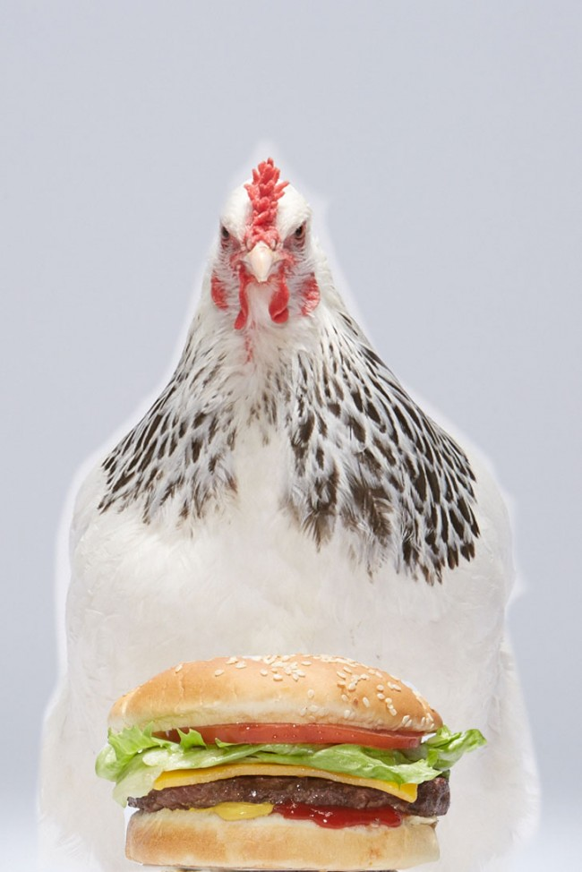 Adweek_Chicken_Burger_001_comp_v2