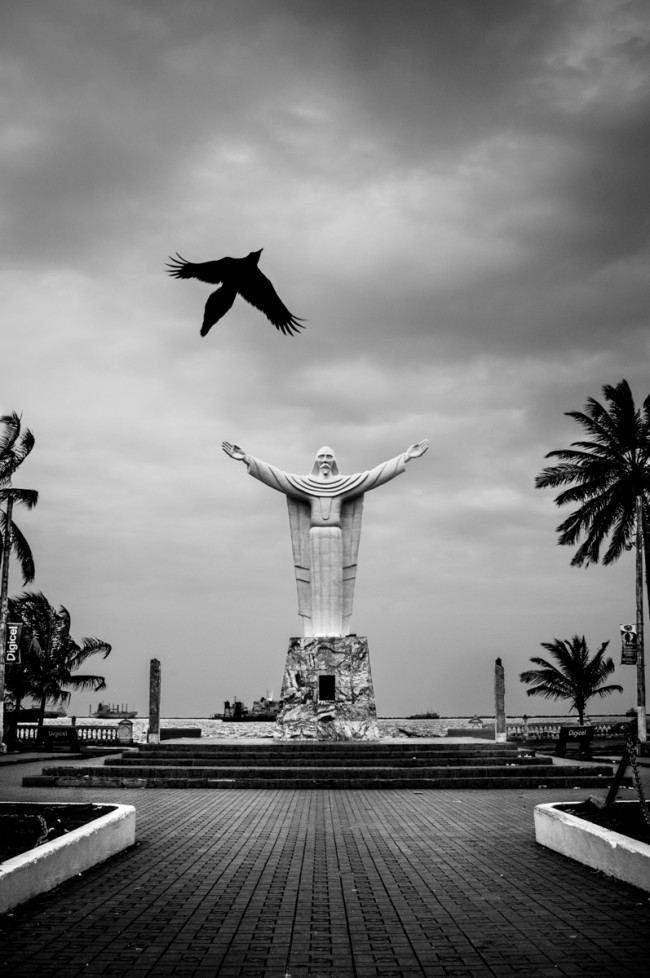 I took this during my first week of working on the cruise ship, in a town called Colón in Panama. This was one of those moments that I love in photography where my instincts took over as soon as I saw the bird flying. I brought the camera to my eye, snapped one photo and new that I had caught it at just the right moment – another early image I am still very proud of.