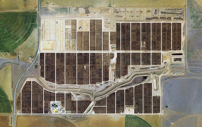 FEEDLOTS - Friona Feedyard- Friona- Texas, Courtesy of Carroll/Fletcher