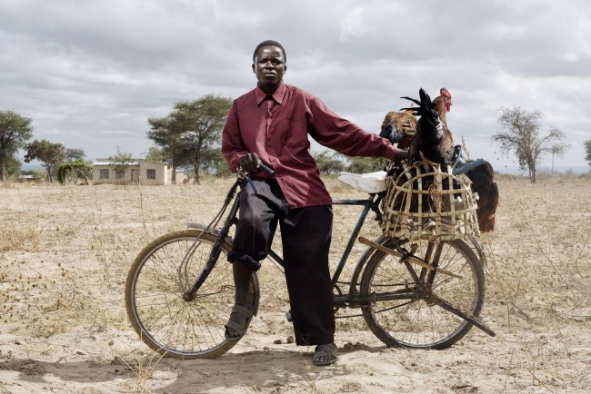 Seven days a week, 23-year-old Galson Mgaya rides from his remote village of Mtwango to the nearest city of Makambako, Tanzania. He straps 20 chickens to the back of his bicycle and then sells them in the city for twice what they'd go for in his small town. The trip takes him 3.5 hours each way, but it's worthwhile because he makes about $8 each day. His daily profit helps support his parents and two sisters.
