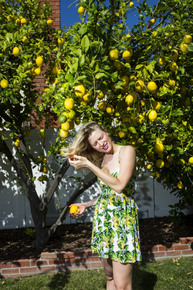 If you've grown up somewhere where you've never seen snow and freaked out when you saw it for the first time- thats how I felt when I saw an abundance of lemon trees in LA.  I was trying every possible way to make use.