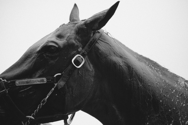 This was also shot for Victory Journal. It was part of a story we shot at the Saratoga Race Track.
