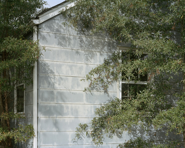 House behind Trees 001