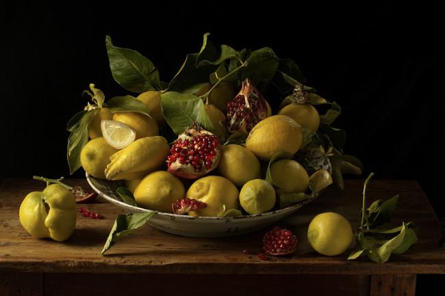 Paulette Tavormina_Lemons and Pomegranates_JVH_2010