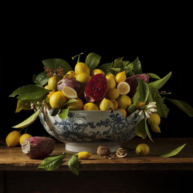Paulette Tavormina_Lemons and Prickly Pears_2013