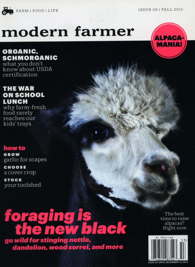 MF_alpaca_cover