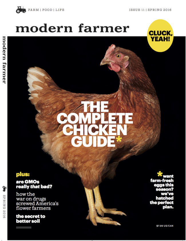 MF_chicken_cover