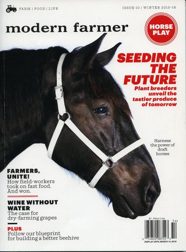 modern_farmer_horse_cover