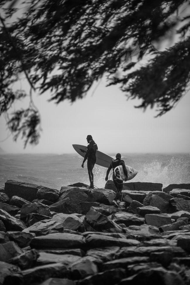 surf-113