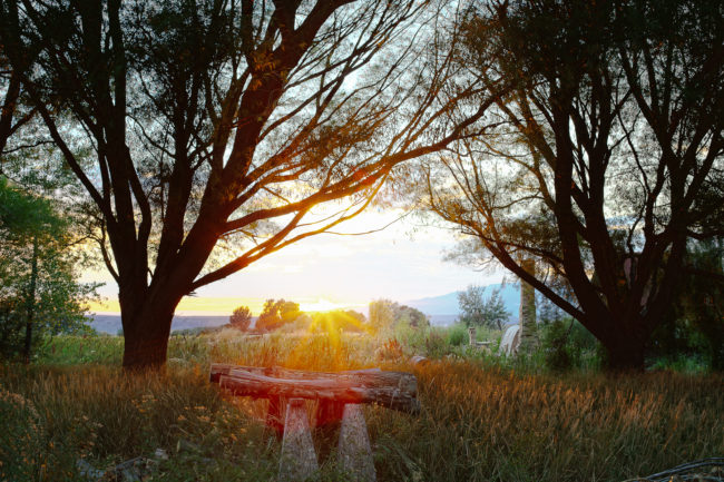 sunset_sawhorses