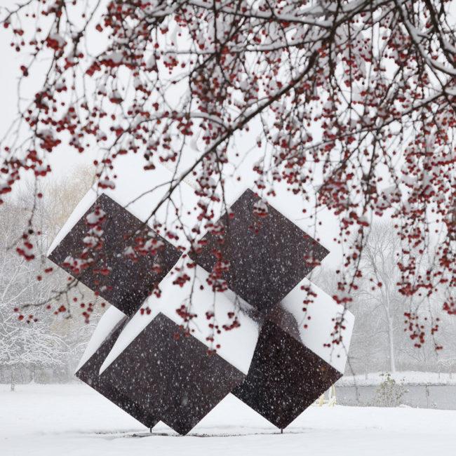 edaniel_salem-and-snow
