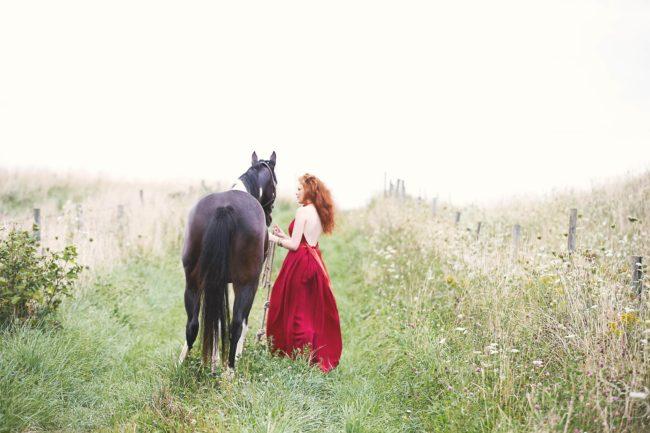 003_01_2013_0826_windswept_horse_079f