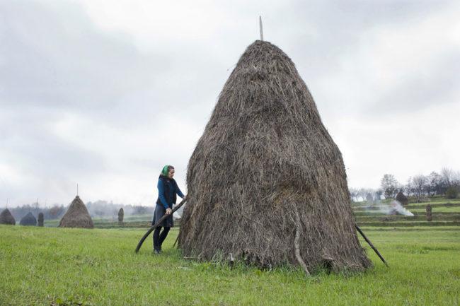 matyas_romania_adjusting-a-haystack